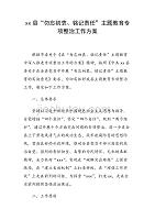 xx县主题教育专项整治工作方案