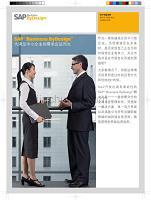 sap business bydesign功能概要