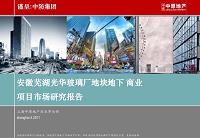 中原安徽芜湖光华玻璃厂地块地下商业项目市场研究报告109p