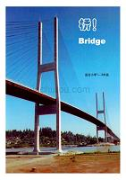 1中文手册.做中学主题活动包—桥