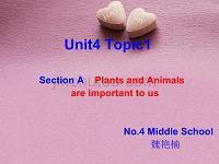 仁爱英语八年级上学期Unit4-Topic1说课稿