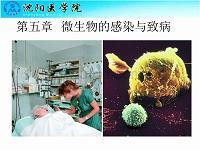 細菌感染與致病機制