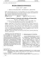 """""""问题学生""""教育研究综述.pdf"""