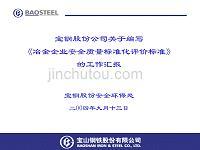 冶金安全质量标准化评价标准(嘉定汇报)教材