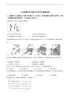 山东省潍坊市2020年中考历史真题试卷精编解析版