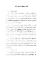 2021会计实践报告范文(可编辑)