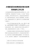 乡镇新型冠状病毒感染的肺炎疫情防控宣传工作总结汇报