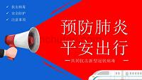 蓝红色抗击预防新冠肺炎安全出行PPT模板