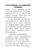 村总支书记述职报告20XX年选派村党支部书记述职报告