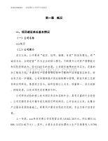 (立项备案申请样例)半导体硅片项目可行性报告.docx