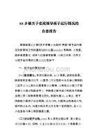 xx乡镇关于党政领导班子运行情况的自查报告