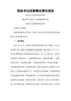 党组书记巡察整改情况报告