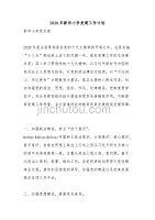 2020年新华小学党建工作计划