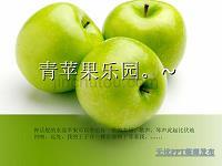 Green Apple Paradise (1.5 ~ 2)