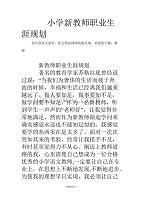 小学新教师职业生涯规划.doc