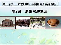 人教版部编七年级上册历史课件-第2课原始农耕生活
