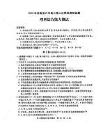 河南省六市2020屆高三第二次模擬調研試題理科綜合 掃描版含答案