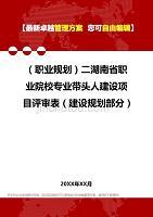 2020年(职业规划)二湖南省职业院校专业带头人建设项目评审表(建设规划部分)