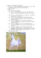 油画作品笔记 白马